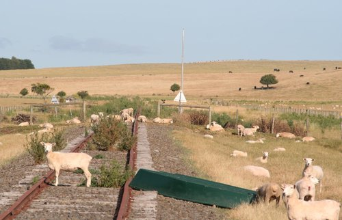 The out of use Sinclair Block Point at 381 km, provision for a TAILS train detection unit but never fitted