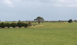 South to Cressy from Colac - Ballarat Road
