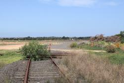Lifted rails east of the Forest Road level crossing, due to the construction of Elders Loop on the standard gauge
