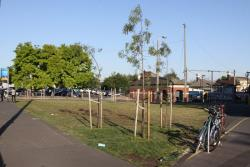 Footscray: Grass and trees cover what was an abandoned wasteland on Irving Street