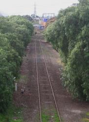 Looking up the branch from Dynon Road