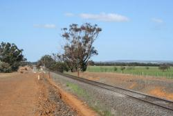 Barwon Park Road looking east, signal for Inverleigh in background