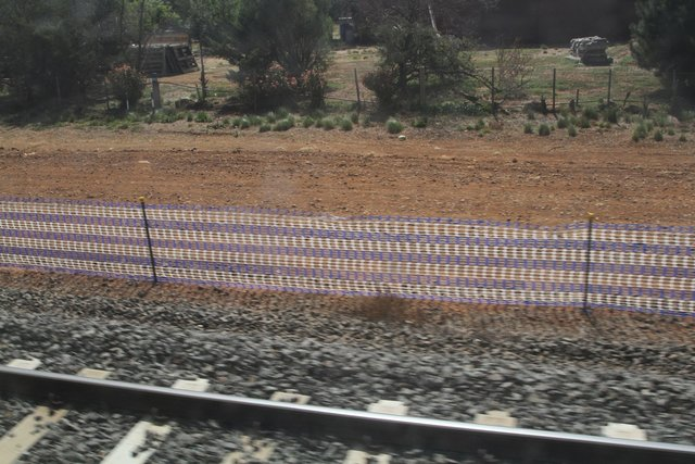Northern side of the line cleared for track duplication