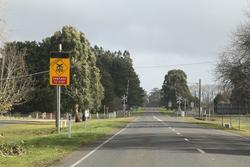 'Advanced Active Warning Signal' (AAWS) on the approach to the Bungaree-Wallace Road level crossing in Wallace