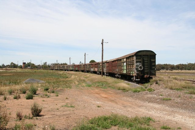 Louvred vans stabled alongside the Hopetoun line