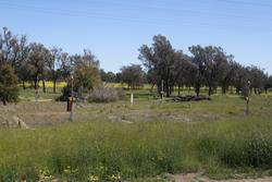 Murtoa: Former way and works campsite beside the station